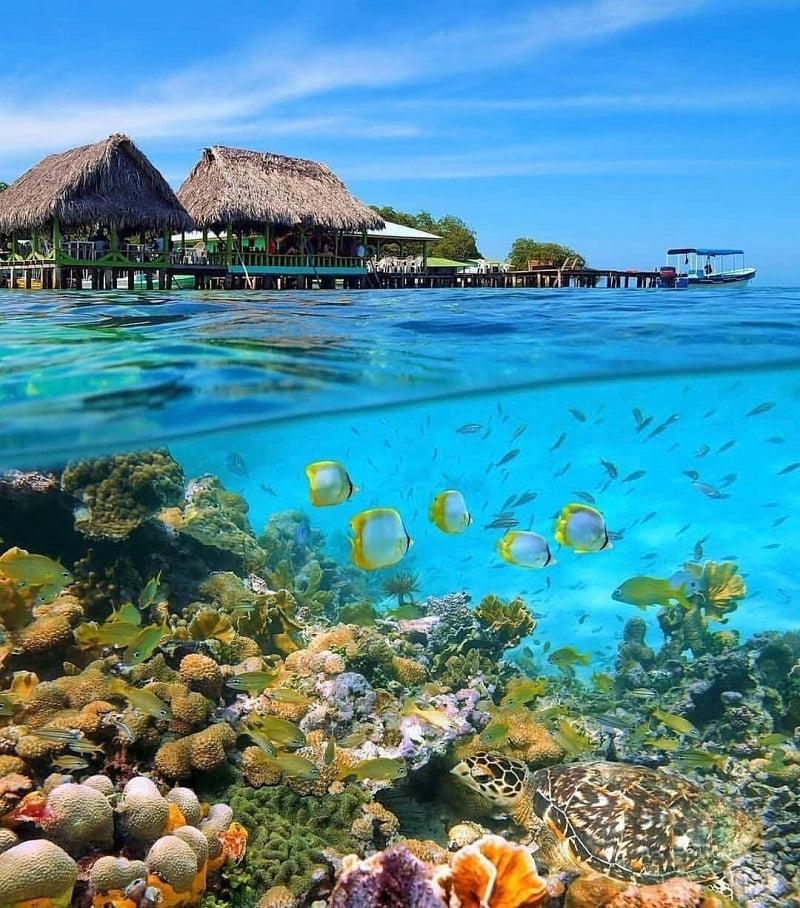 جاذبه های گردشگری جزیره کیش,جاذبه های گردشگری کیش,راهنکای گردشگری در کیش,